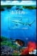 Marine Life - Shark and Green Sea Turtle, souvenir sheet, MINT, 2018