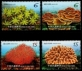 Corals of Taiwan, set of 4 stamps, MINT, 2018