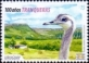 200 years of Tranqueras City; Bird Greater Rhea (Rhea americana), stamp, MINT, 2014