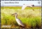 Snowy Egret (Egretta thula), stamp, MINT, 2015