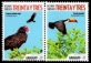 Turkey Vulture (Cathartes aura) and Toco Toucan (Ramphastos toco), set of 2 stamps, 2018