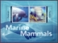 Marine Mammals /Canouan/, souvenir sheet with 2 stamps, MINT, 2012