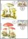 Protected Mushrooms, set of 2 FDCs, 1999